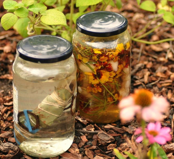 filled jars basking in sunshine