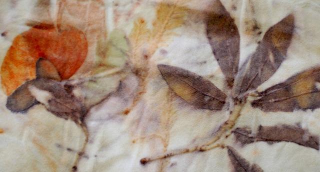 oak leaf, pines, and eucalyptus on wool