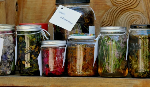 my collection of jars with botanical